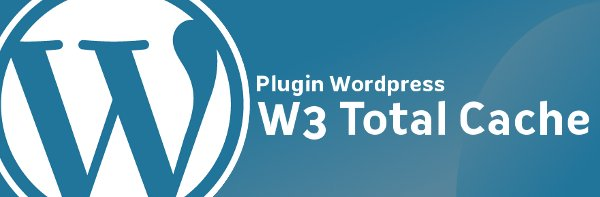 W3TC Plugin – Automatically Clear Cache On Updating Post